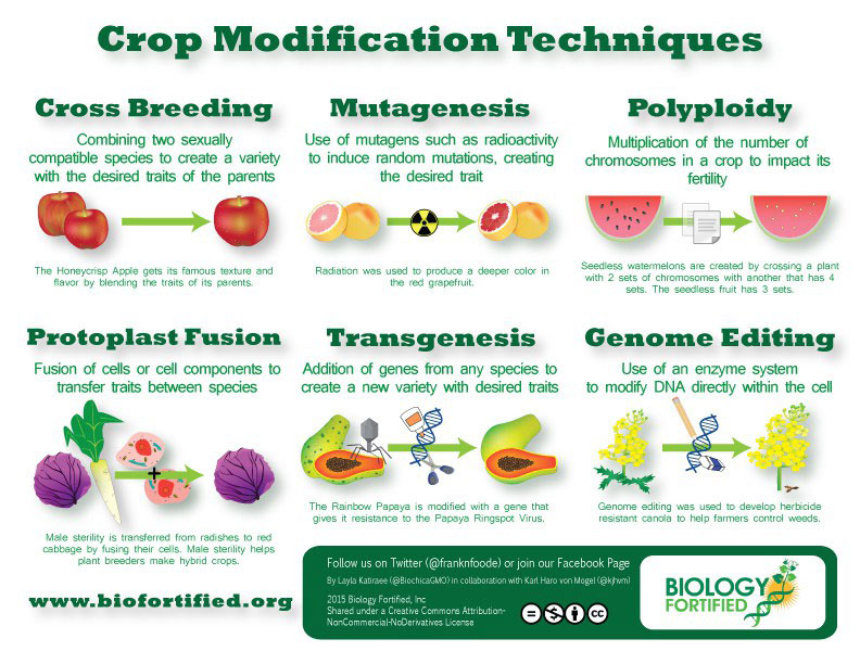 Figure 1: various crop modification techniques used to select for desirable traits in organisms.
